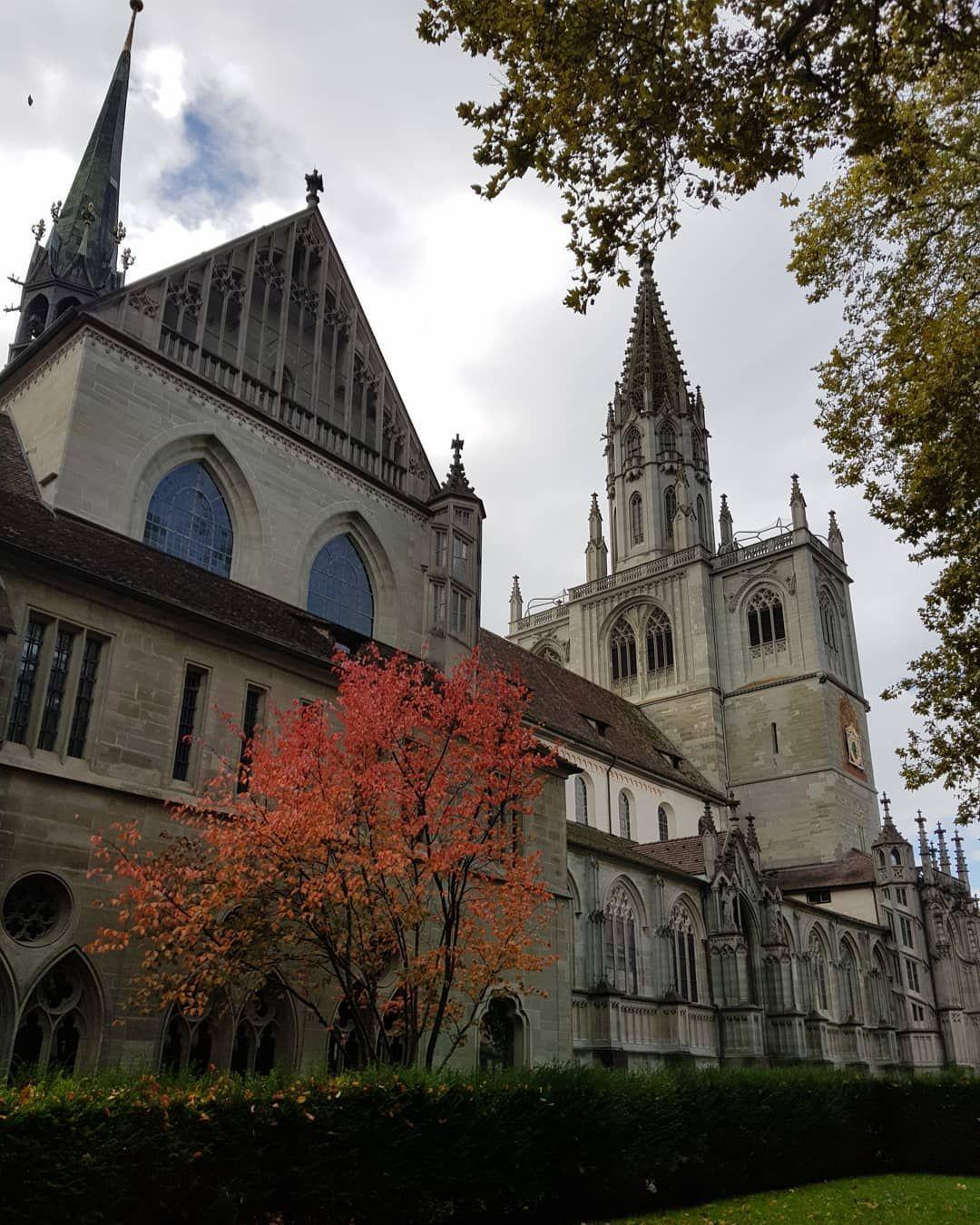 Die Farben Des Herbstes Herbst Bodensee Konstanz