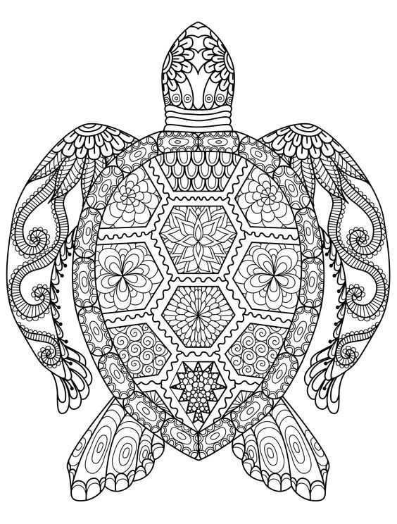 20 Gorgeous Free Printable Adult Coloring Pages: | Drawings ...