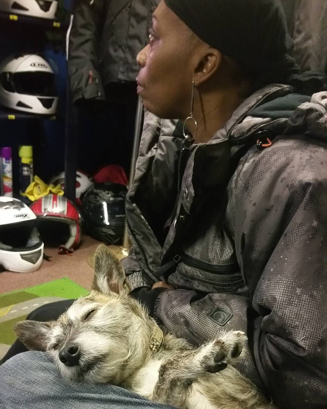 #mashtherebeldogg.... Another tough day #motorcycletraining with #rebeldoggriders  paws for thought.  www.rebeldogg.com