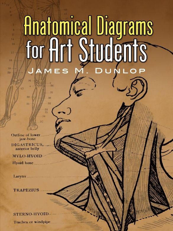 Anatomy For Sculptors: Understanding the Human Figure