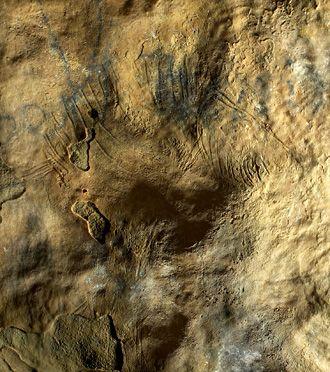 Cheval gravé. Grotte Margot. Pays-de-la-Loire