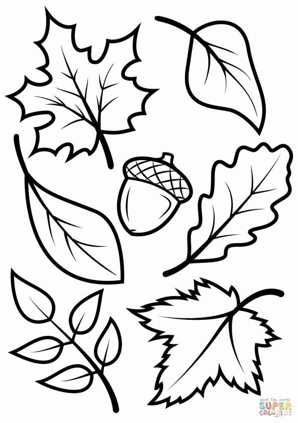 pin egbertha sirenna op coloring and herfst