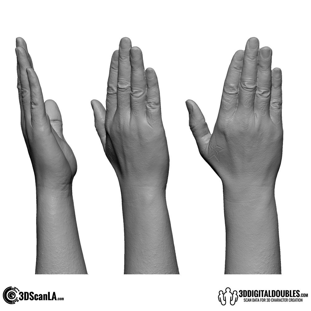 3D Hand Scan 01-02 | 3d character, Character design and 3d