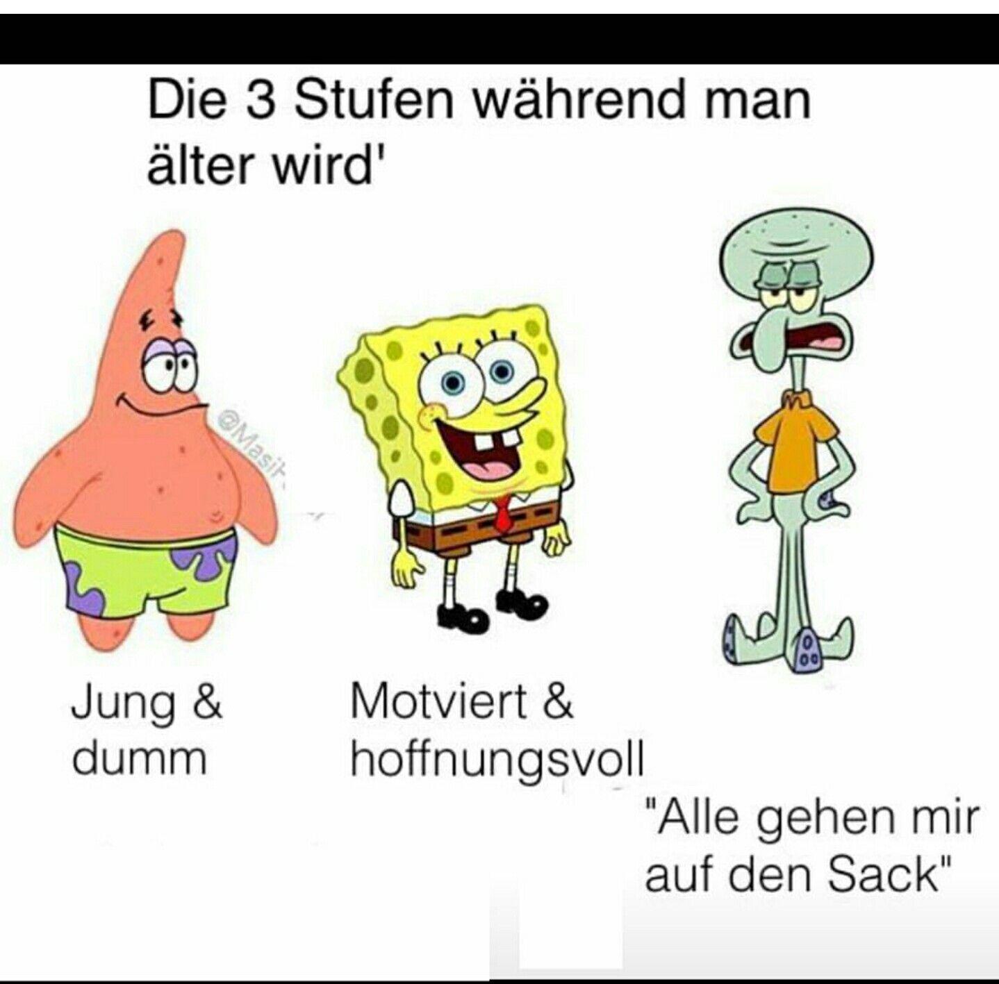 so wahr | Memes spongebob, Urkomische zitate, Lustige ...
