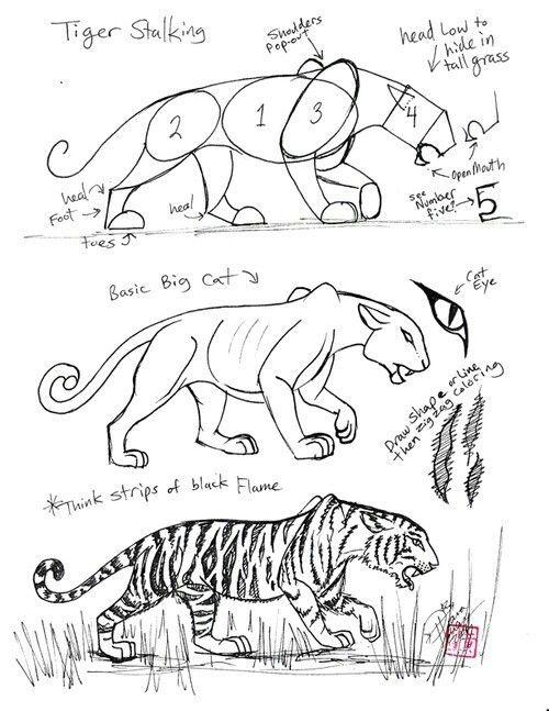Large cats technique de dessins dessin tigre comment dessiner et art dessin - Comment dessiner un tigre ...