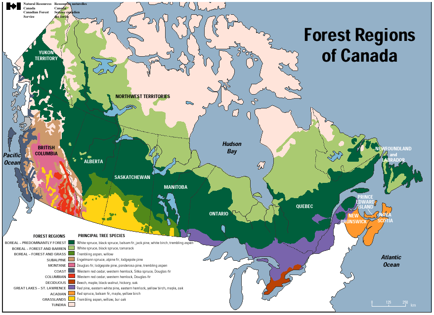 Forest Regions Of Canada Canada La Geographie Map