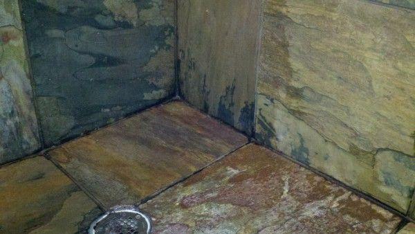 How To Get Black Mold Off Bathroom Walls
