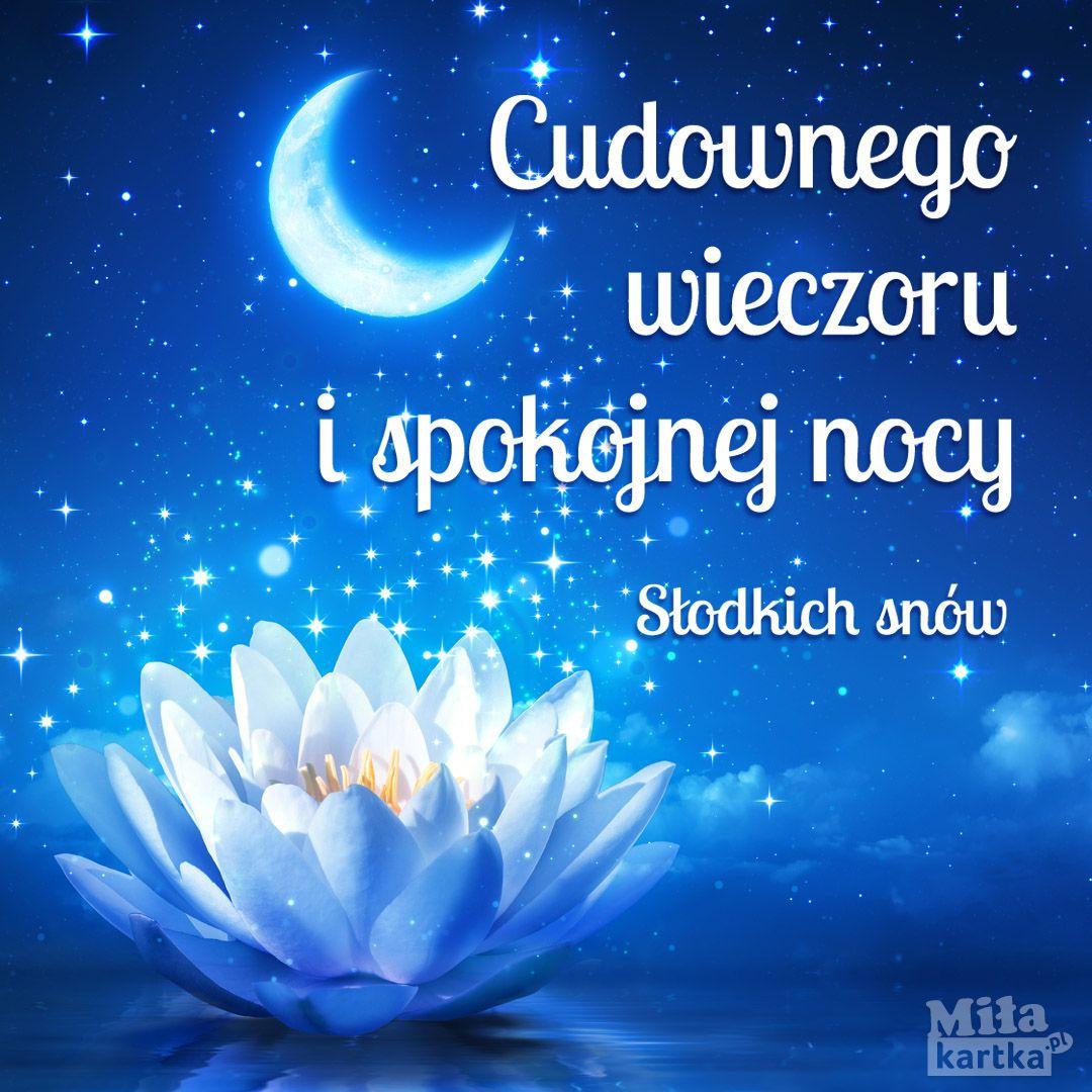 Biała lilia - kartka na Dobranoc #lilia #dobranoc #