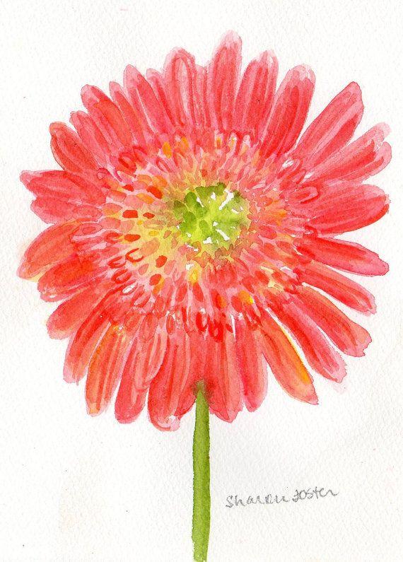 Coral Gerbera Daisy Painting Original Watercolor Gerber Daisy Art