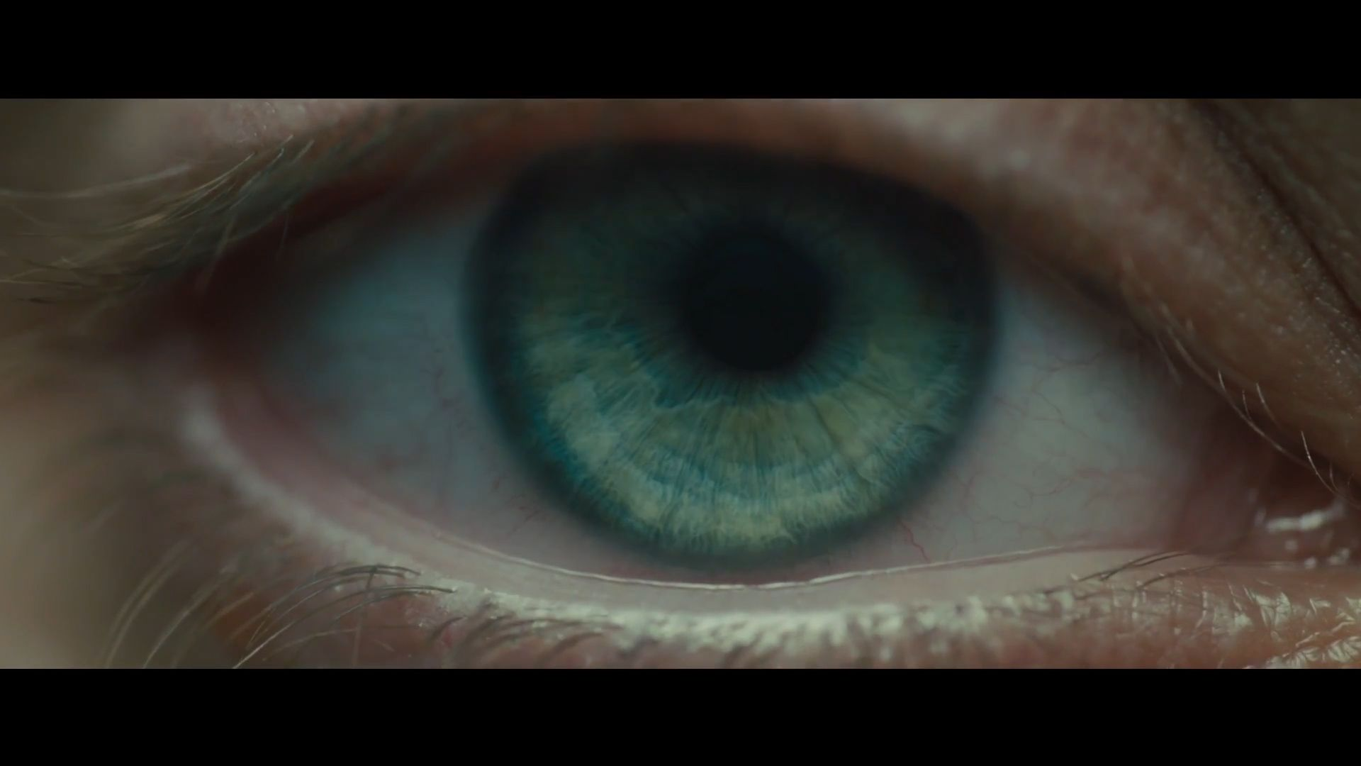 Once Again Blade Runner With The Eye Human Or Replicant Blade Runner Blade Runner 2049 Blade