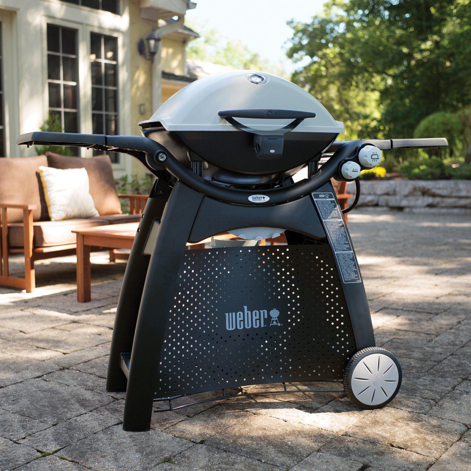 Weber Q 3200 Lp Gas Grill Www Hayneedle Com Gas Grill Best Gas Grills Gas