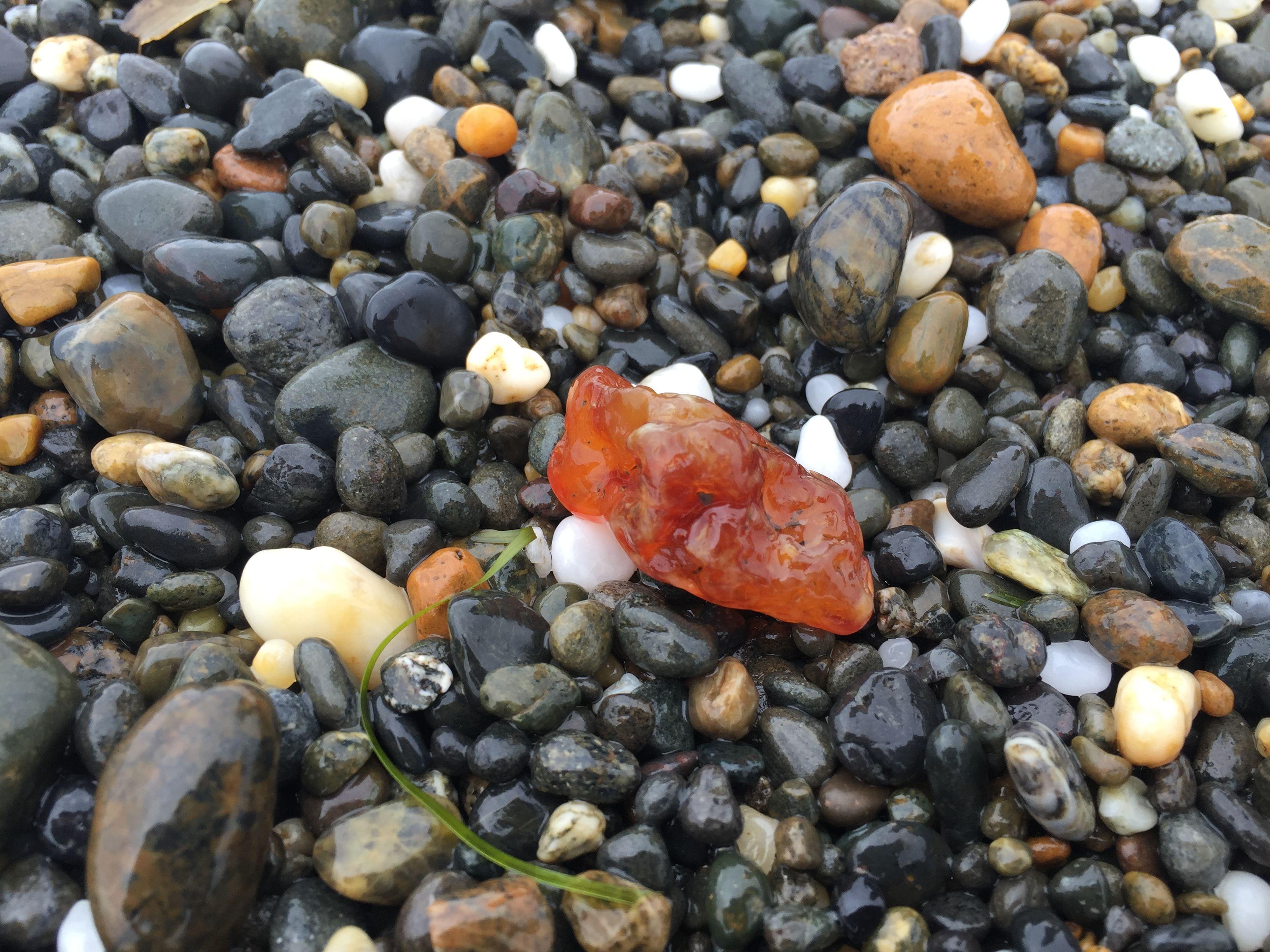 Agate found on damon pt beach ocean shores wa rock