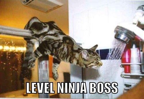 Level Ninja Boss