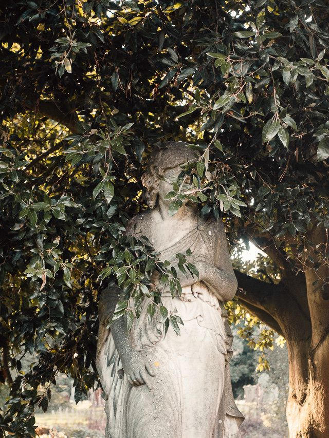 statue of a woman in cemetery, hiding behind leaves