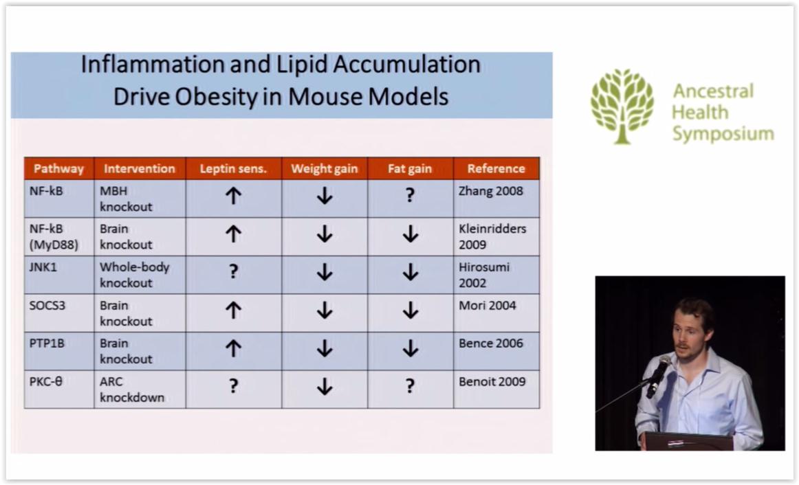 Valtsun terveysblogi: Lihavuus: Syitä ja ratkaisuja