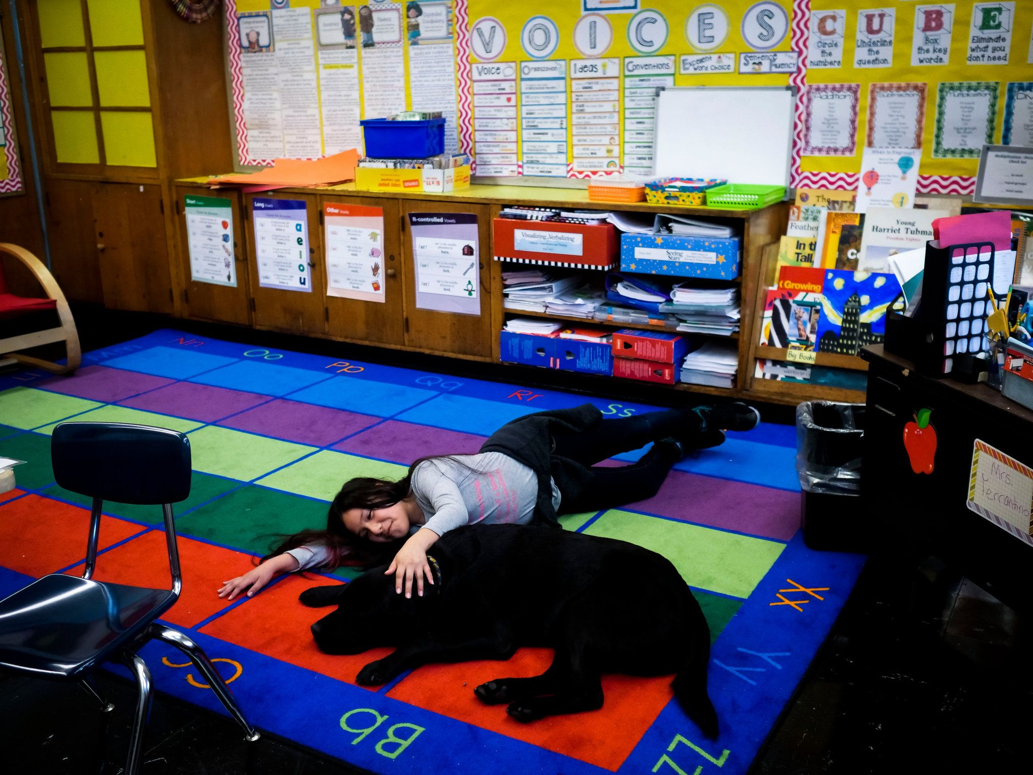 Where the Teacher's Pet Sleeps in a Dog Bed Dog bed