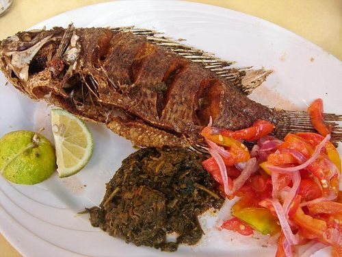 Fried tilapia free recipe at cooknutri com food and for How to cook tilapia fish