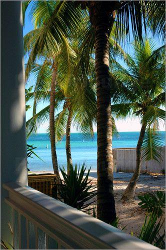 Backyard Restaurant Key West louie's backyard in key west fl  fabulous restaurant with the
