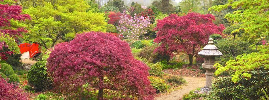 Parc Botanique De Haute Bretagne Parcs Et Jardins Parc