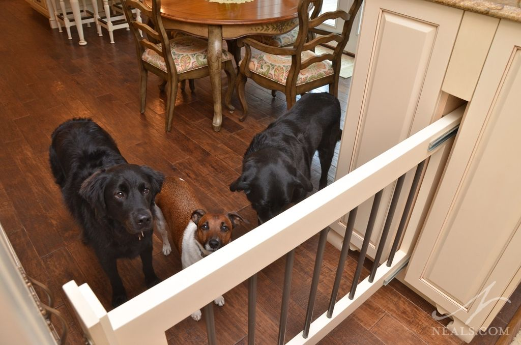 13 Diy Dog Gate Ideas: A Slide-out Gate Between Two Cabinets Keeps The Dogs Out
