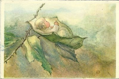 MiliWeber :  Fairychild