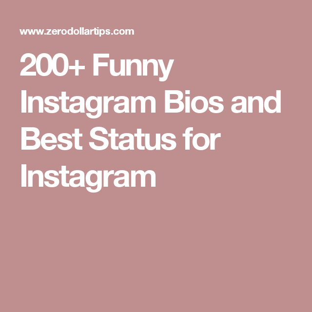 200 Funny Instagram Bios And Best Status For Instagram Instagram Status Instagram Bios Funny Good Instagram Bios