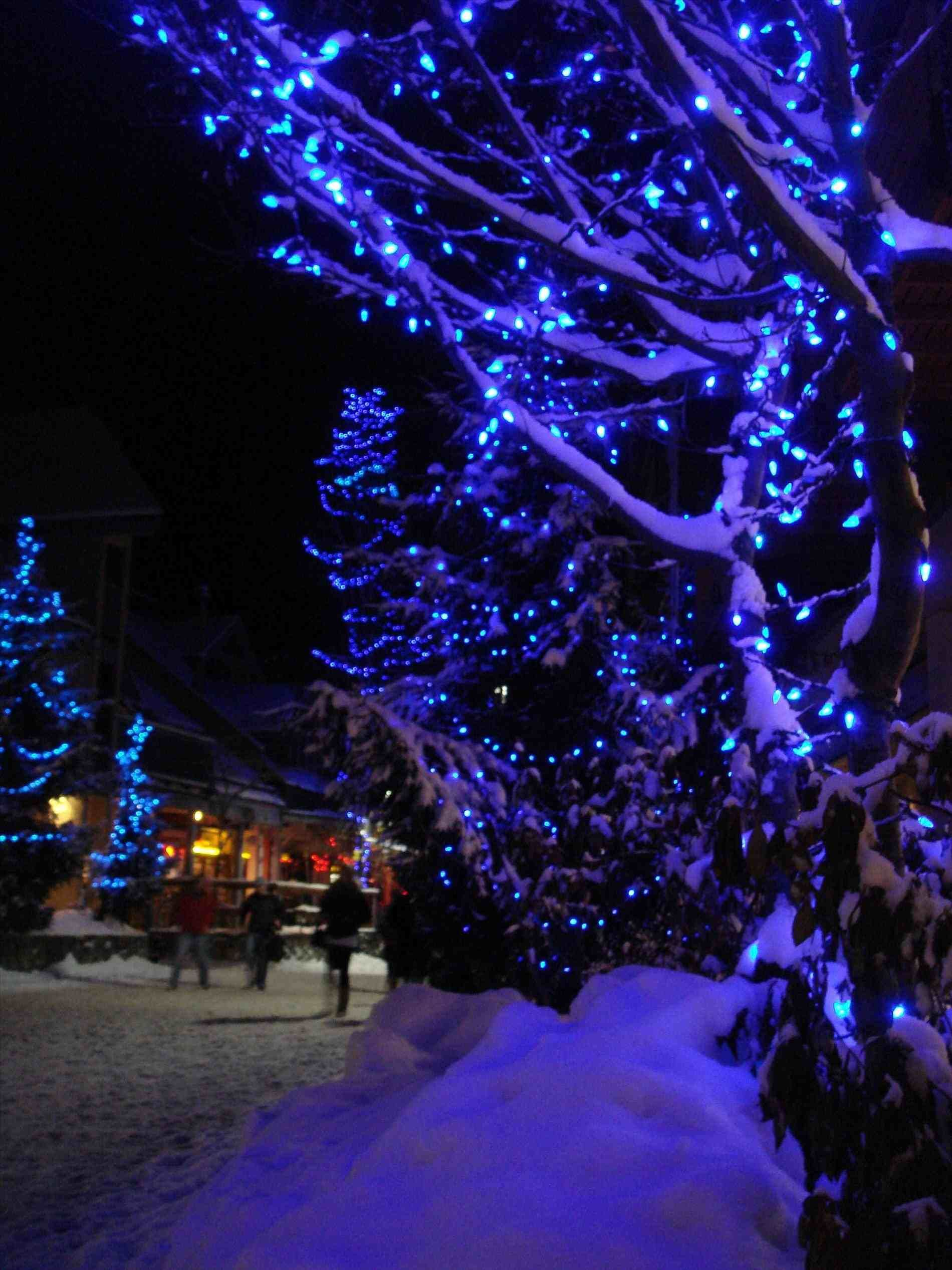 New Post Blue Christmas Tree Lights Interesting Visit Xmastsite