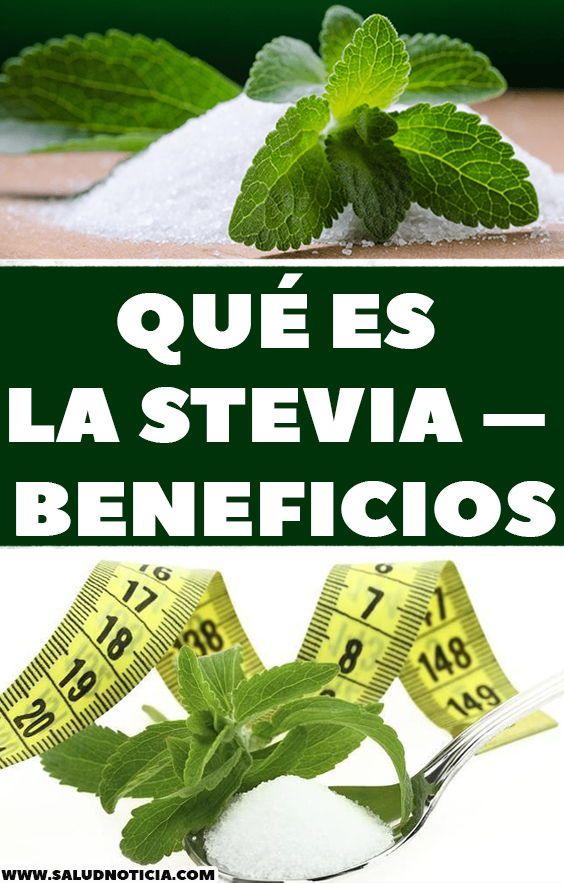 Como tomar el stevia para adelgazar