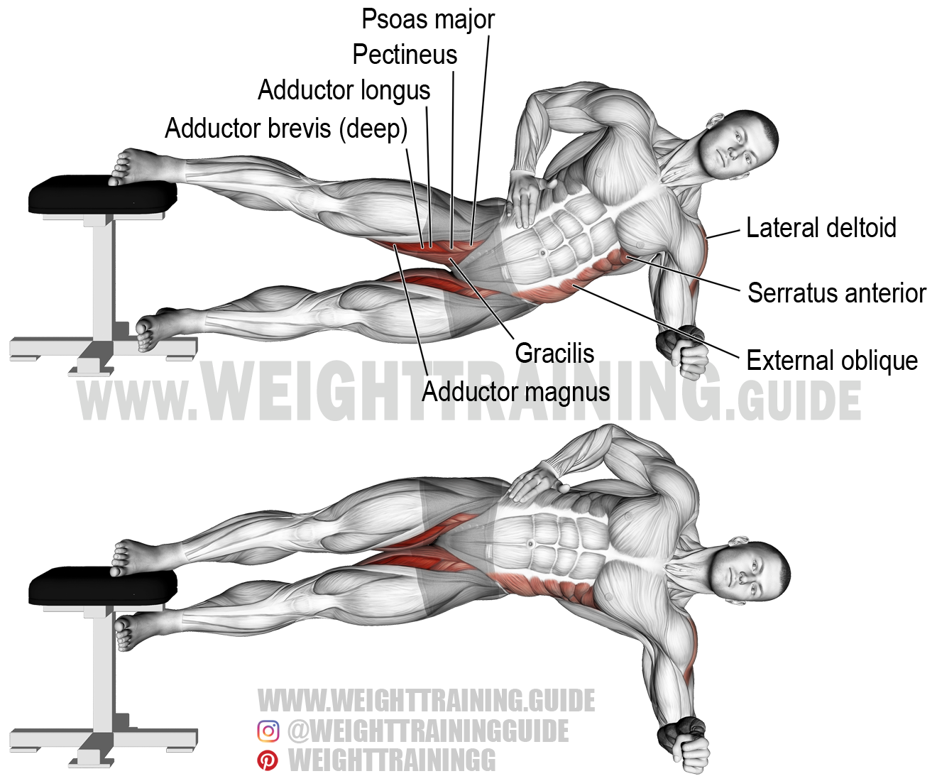 Side plank hip adduction exercise instructions and video | Pinterest ...