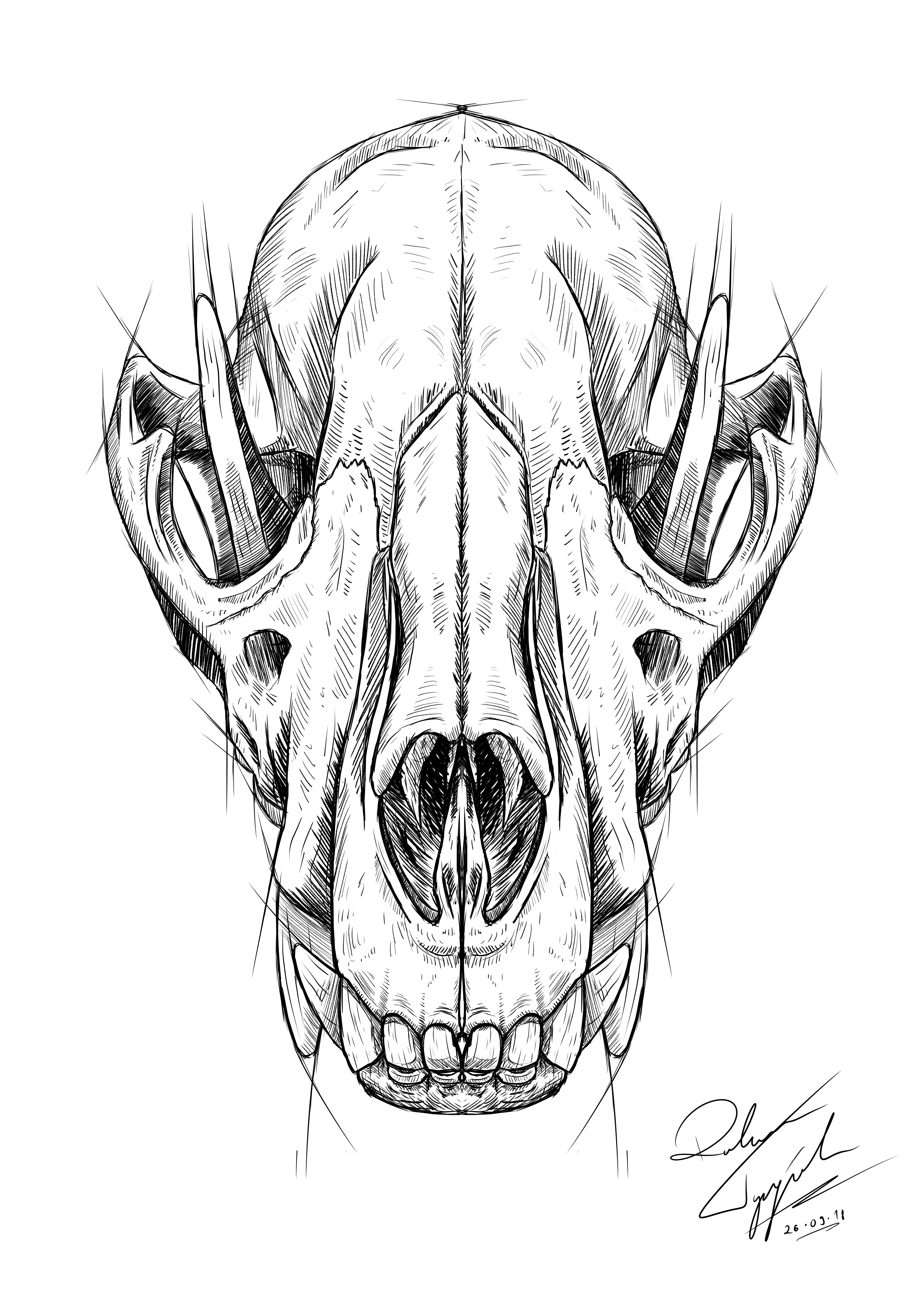 Pin On Sketch