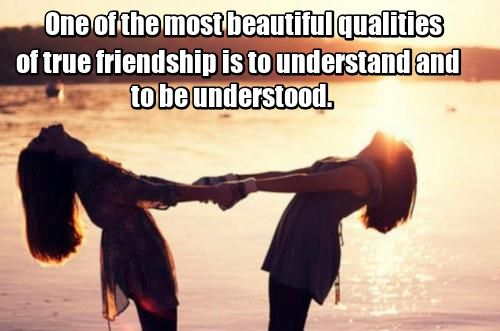 Short Essay On Albert Einstein One Of The Most Beautiful Qualities Of True Friendship Is To Understand And  To Be Understood  Lucius Annaeus Seneca Health Essay Sample also An Essay On Population One Of The Most Beautiful Qualities Of True Friendship Is To  Why Do I Want To Be A Nurse Essay