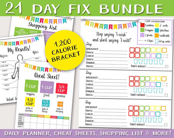 21 Day Fix Logging System BUNDLE - Tracking Sheet Beach Body 1,200 - workout program sheet