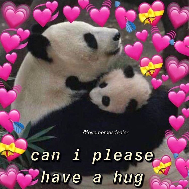 Wholesome Memes On Instagram Aren T Pandas So Cute Follow Lovememesdealer For More Mood Cutememe Funny Couples Memes Couple Memes Cute Couple Memes