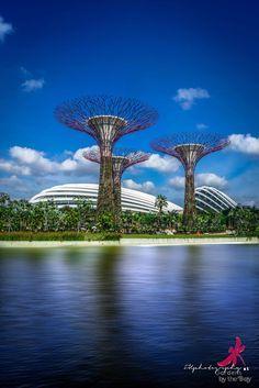 1000+ images about Amazing spaces by design - Landscape ...