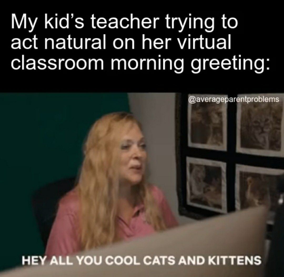 Pin By G On Tiger King School Memes Memes Distance Learning