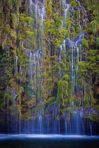20 Fotografias de Natureza