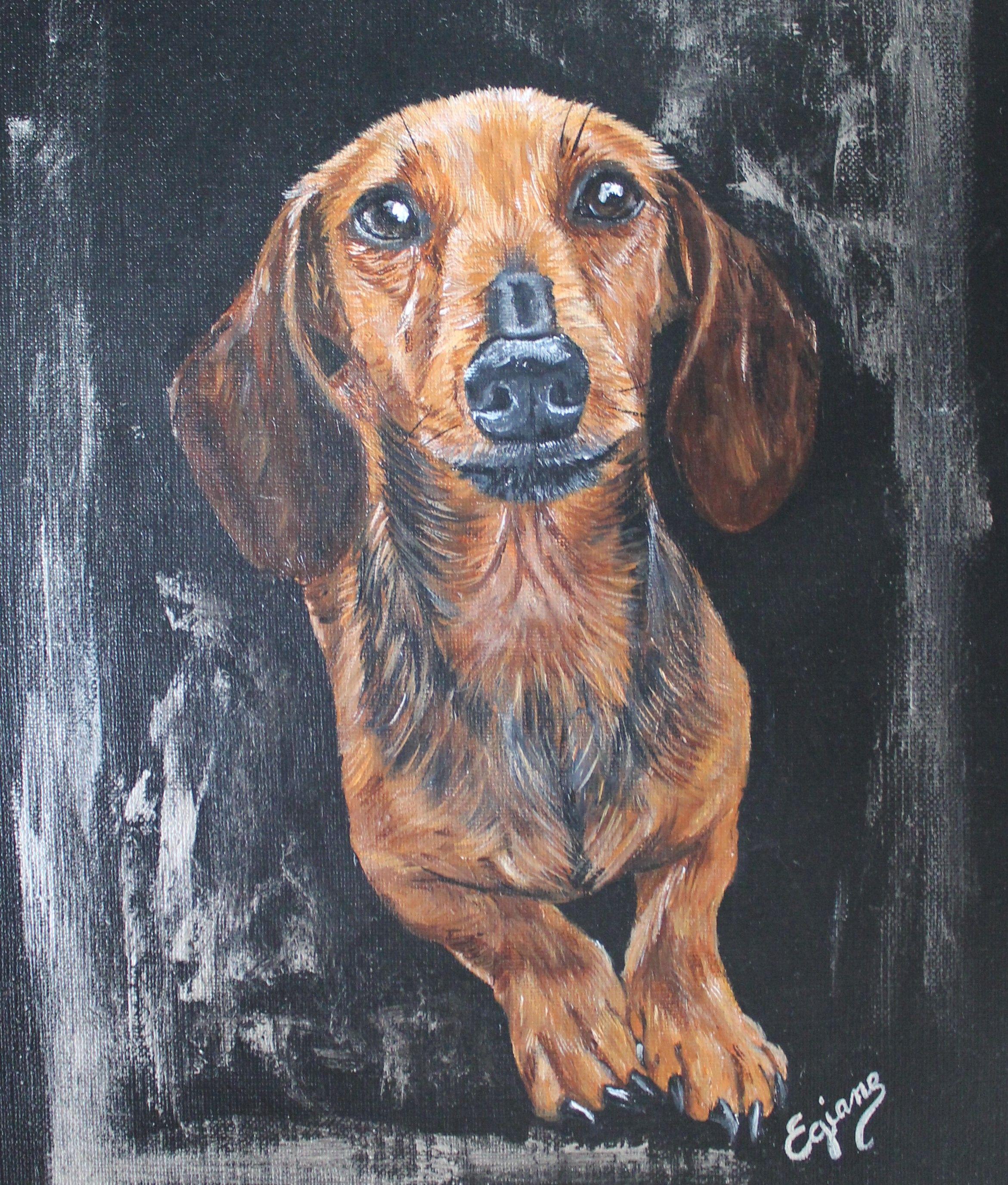 Portrait De Teckel Poils Ras Peinture Acrylique Sur Toile 3040cm