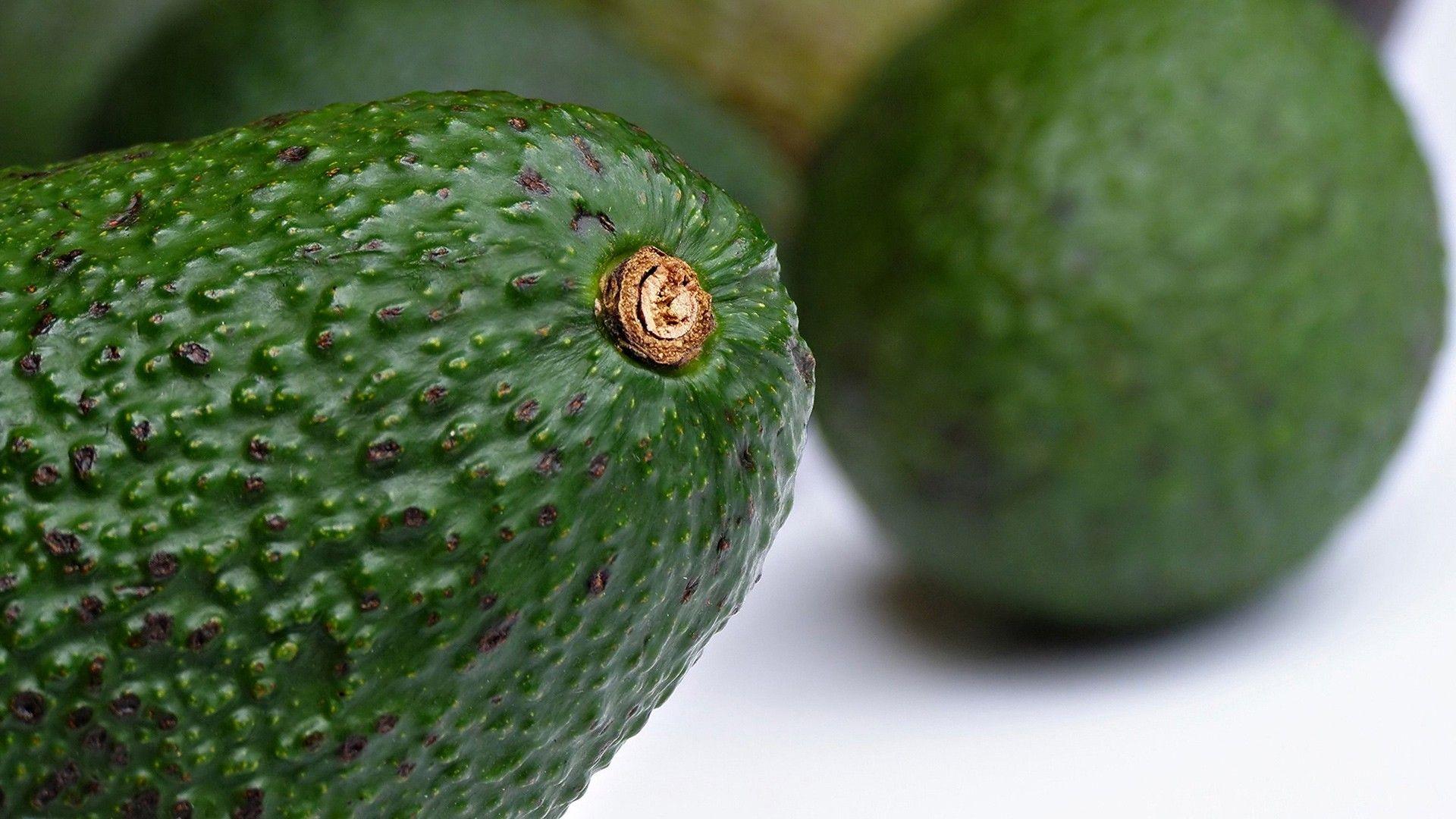 Avocado Avocado, Fruit, Lime