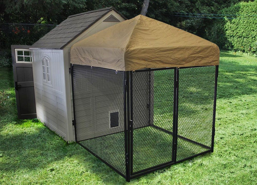 Preman Shed Turned Doghouse With Outdoor Covered Enclosure
