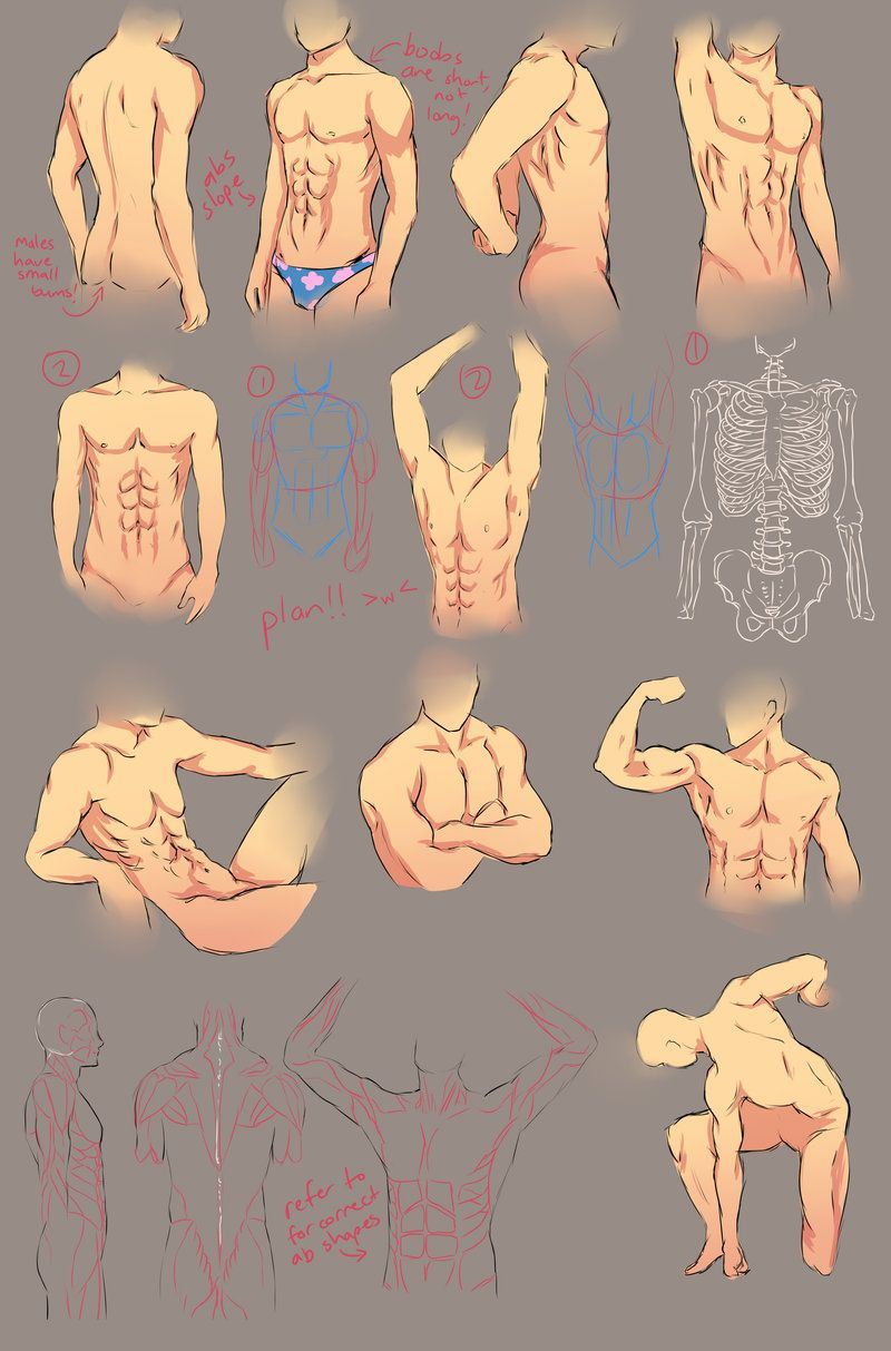 Male Anatomy Study by *chi-u on deviantART | Body, Light ...