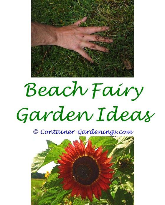 Winter Garden Ideas Uk Part - 40: Pinterest