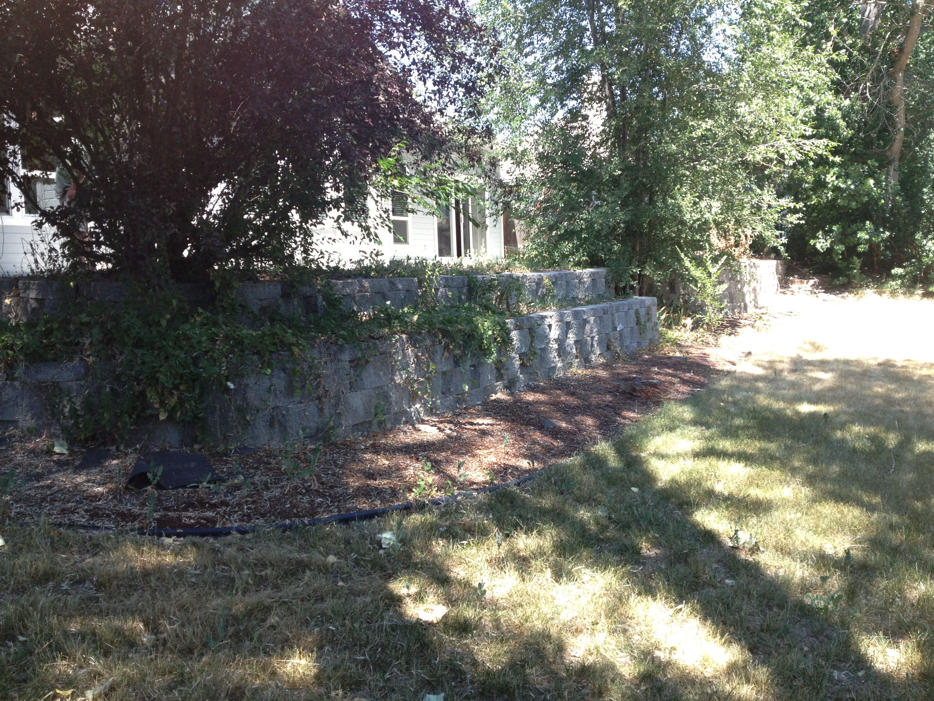 Charming Backyard Screaming With Potential To Be So Lovely   Terraces And Patios  Galore!