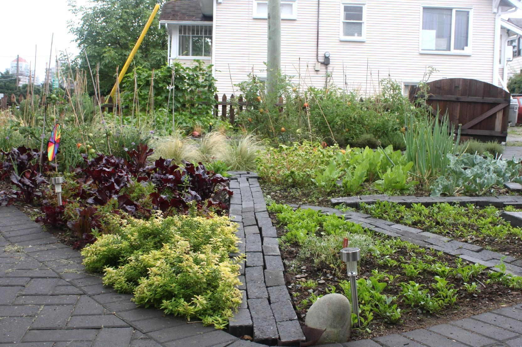planning a front yard vegetable garden innovative front yard vegetable garden design - Front Yard Vegetable Garden Ideas