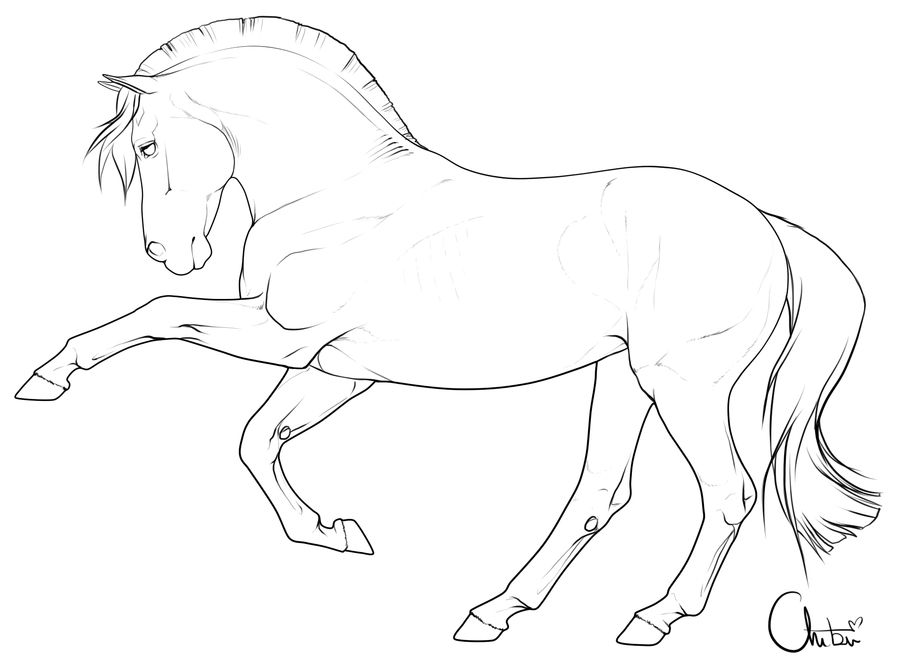 Free Pony Lineart By Bh Stables On Deviantart Horse Art