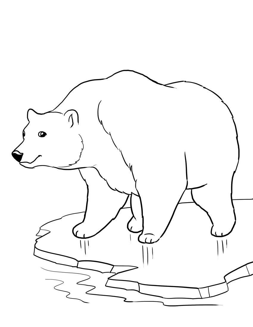 Isbjörn målarbild | Crafts for Students | Pinterest | Polar bear ...