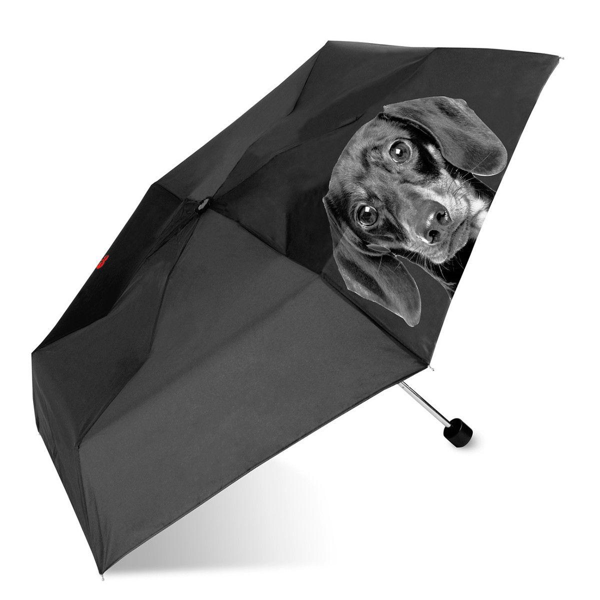 Fab Com Dachshund Umbrella Black Dachshund Dachshund