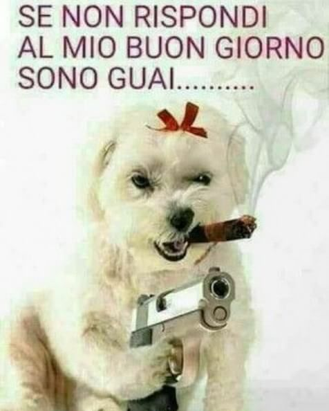 Immagini divertenti buongiorno gratis immagini e frasi for Buongiorno divertente sms