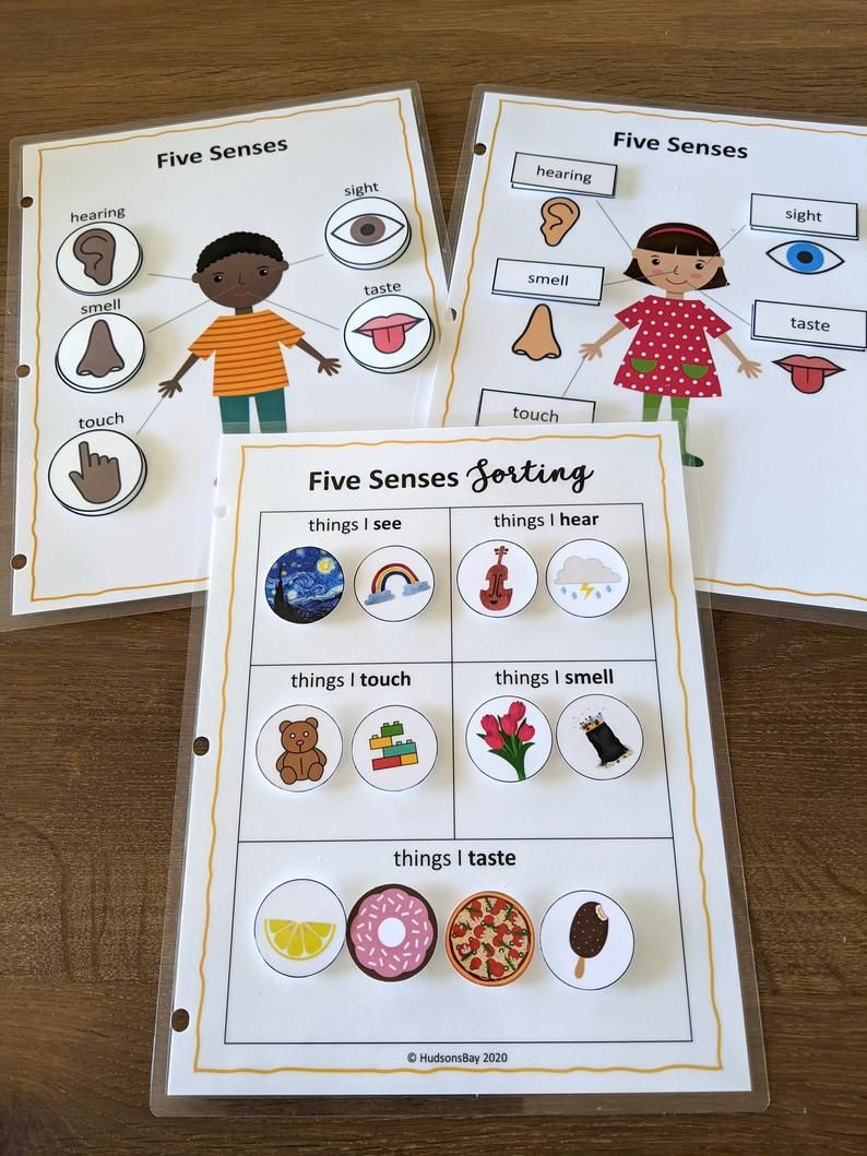 Five Senses Worksheets Toddler Busy Book Printable Toddler Etsy Five Senses Worksheet Hand Crafts For Kids Busy Toddler [ 1059 x 794 Pixel ]