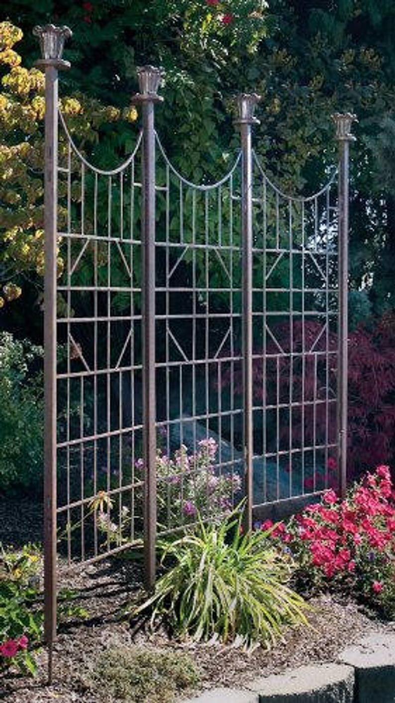 Pin By Passionflower Gardens On East Side Landscape Design In 2020 Metal Garden Trellis Patio Trellis Garden Trellis Designs