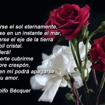 Imagen De Rosas Con Un Bello Poema De Amor Amor Poems Words